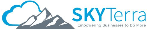 SkyTerra Technologies - IT Consulting Company